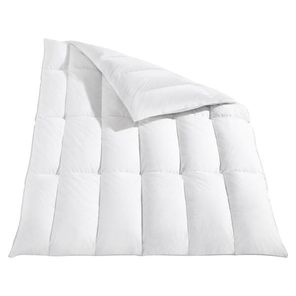 Häussling Body Perfect Daunendecke Modern Line Kassettenbett 90% Daunen 10% Federn multi sleep warm