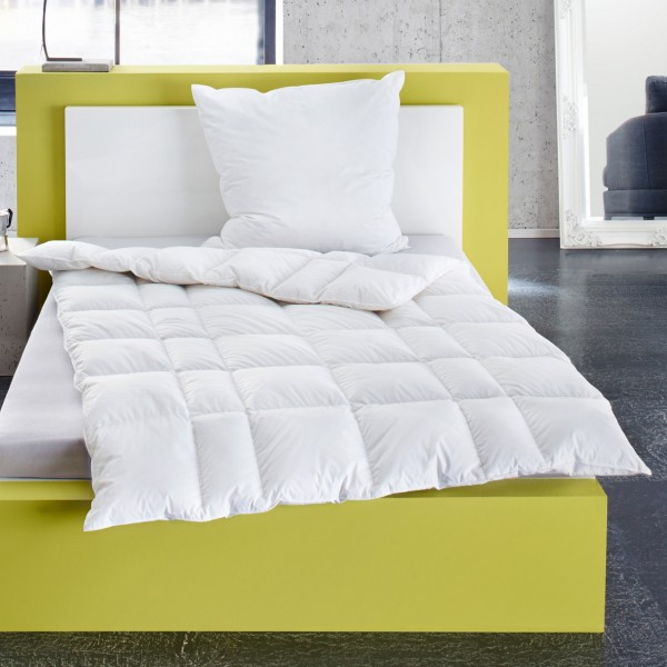 Häussling Select Daunendecke Kassettenbett 4x6 Karo multi high extra warm